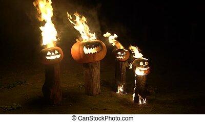 brûlé, couleur, halloween, rigolote, dusk., bûche, fâché, fumée, brume, champ, exhales, potiron orange, grand, brûler, potirons, effrayant, obscurité, arbre, respire, flamme, vapeur