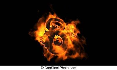 brûler, dragon, zodiaque, chinois, h