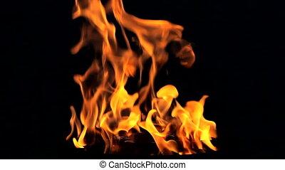 brûler, noir, flamme, boucle, fond
