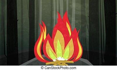 brûler, nuit, boucle, camp, hd