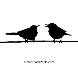 branche, dessin, séance, oiseaux, vecteur, deux