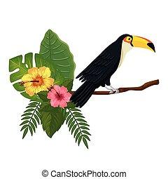 branche, toucan, pousse feuilles, fleurs