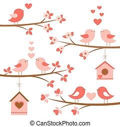 branches, amour, mignon, oiseaux, ensemble, fleurir