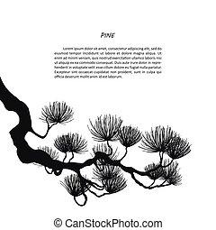 branches, pin, arrière-plan noir, silhouette, blanc
