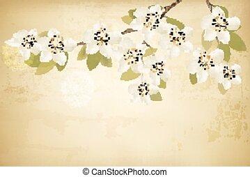 branches, printemps, arrière-plan., vector., vendange, fleurs