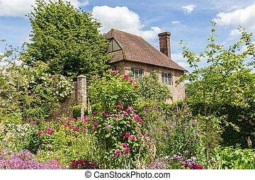 britannique, pendant, sussex, jardin, angleterre, printemps, vieux, rose