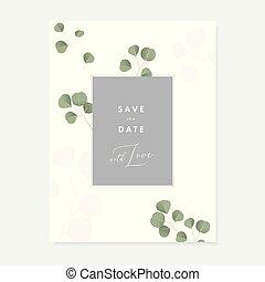 brochure, eucalyptus, illustration, simple, vendange, feuilles, dollar, isolé, template., invitation, arrière-plan., vecteur, vert, carte, mariage, floral, blanc, botanique, conception, argent, salutation