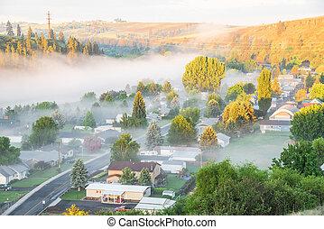 brumeux, aérien, paysage, ville, colfax, usa, washington, oriental, petit, campagne