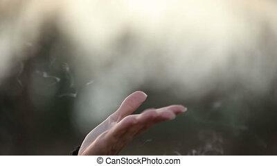 brumeux, fumée, lumière, toucher, rayons, femelle transmet, pistes, pendant, levers de soleil