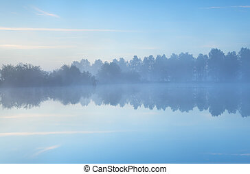 brumeux, tranquille, lac, matin