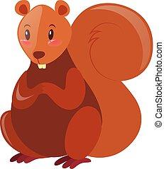 brun, fourrure, écureuil
