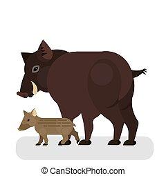 brun, fourrure, character., cochon, verrat, sauvage
