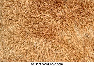 brun, fourrure, fond, texture