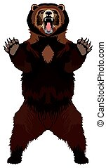 brun, grizzly, animal