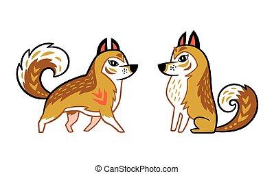 brun, husky, chien, sibérien