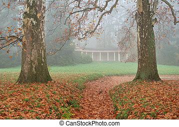 brun, laisse deux, arbres, avion, sentier, couvert, fort, baissé