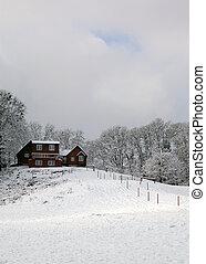 brun, neige, maison