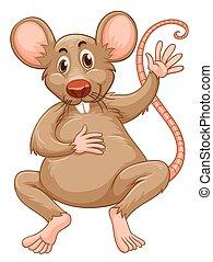 brun, rat, fourrure