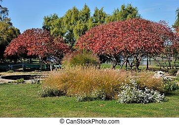 bucharest, leaves:, vue, parc, automne