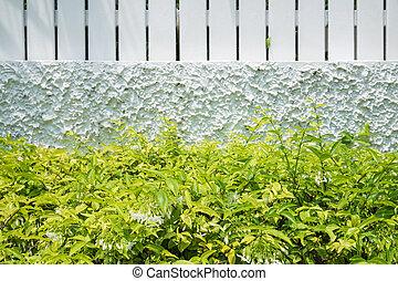 buisson, blanc vert, barrière