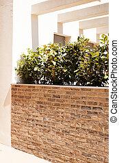 buisson, jardiniera, décoratif, briques