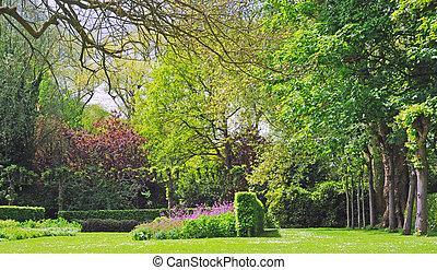 buissons, pourpre, printemps, arbres, parc, temps, fleurs