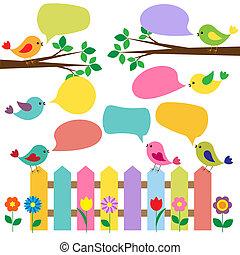 bulles, parole, oiseaux, coloré
