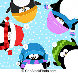 célébrer, pingouins, hiver