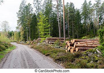 côté route, bois construction, pays, piles