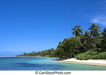 côte, océan indien