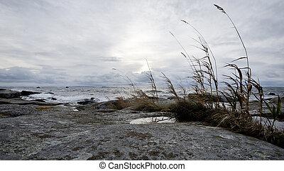 côtier, paysage, nordique, scénique