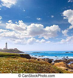 cabrillo, point phare, parcours, pigeon, 1, état, californie, côtier, hwy, autoroute