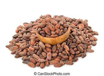 cacao, haricots