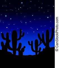 cactus, scène, nuit