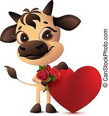 cadeau, roses, tenue, coeur, taureau, jour, valentines, bouquet, mignon