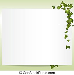 cadre, vecteur, spring/summer, feuilles, lierre