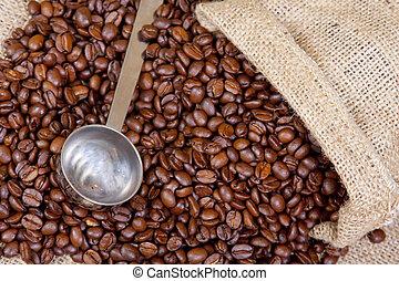 café, exclusivité