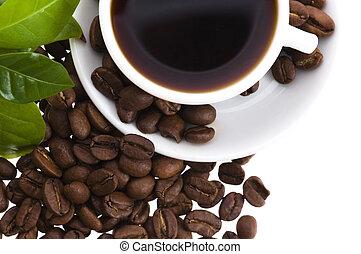 café, frais, branche