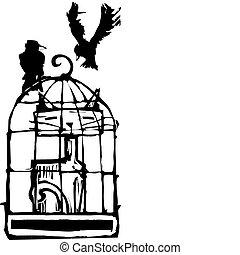 cage d'oiseaux, #1, chat