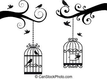 cage d'oiseaux, oiseaux, vecteur