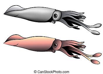 calamar, tatouage