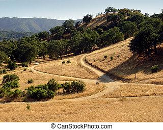 californie, collines