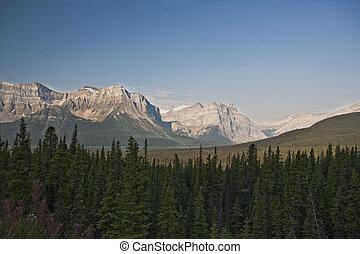 canada, canadien, -, national, rockies, parc, jaspe, alberta