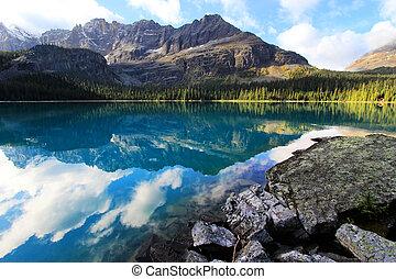 canada, colombie, yoho, national, lac, britannique, parc, o'hara