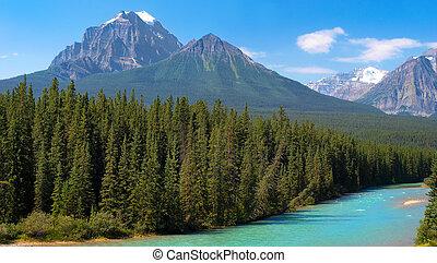 canada, désert, banff, canadien, parc national, alberta