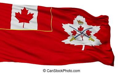 canadien, armée, isolé, seamless, drapeau, boucle