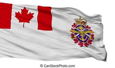 canadien, isolé, seamless, drapeau, forces, boucle