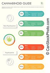 cannabinoid, vertical, business, infographic, guide