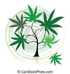 cannabis, arbre