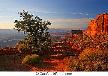 canyonlands, levers de soleil